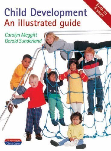 Child Development: An Illustrated Guide (Heinemann child care),Carolyn Meggitt,