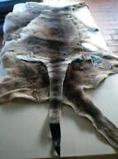 Kangaroo Skin