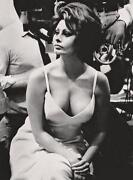 Sophia Loren Photo