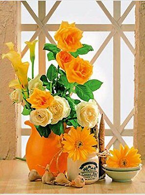3D Lenticular Poster -Yellow Rose, Aster - Flowers  12x16