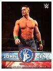 Topps Tribute Topps WWE Wrestling Trading Cards