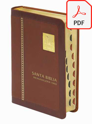 BIBLIA LETRA GRANDE REINA VALERA 1960 santa biblia