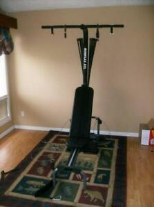 BowFleX XTL gym weights exercise