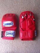 Sandee MMA Gloves