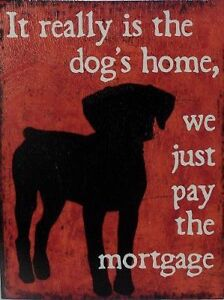 WHY USE A MORTGAGE BROKER???