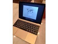 "12"" Gold Macbook (512gb Flash Drive model)"