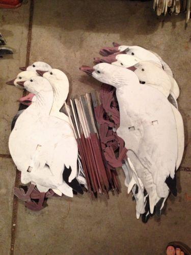 Canada Goose victoria parka outlet official - Snow GOOSE Decoys | eBay