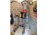 Everlast Pull up and Dip Power Tower (With Punchbag)