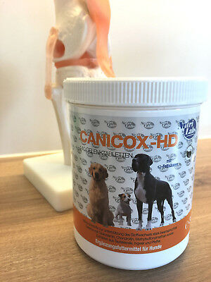 Canicox HD 140 Kautabletten von NutriLabs für beanspruchte Hundegelenke