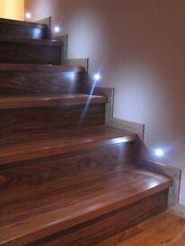 Professional handyman /fireplace/plumbing /painting/decorator/Laminate floors and stairs/Carpenter