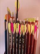 Easton XX75 Arrows
