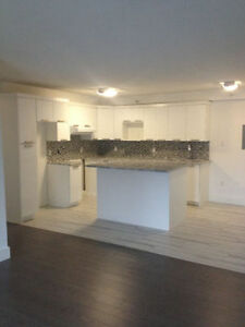 Condo Quality 3 Bedroom Barrington Street
