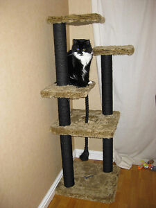 Plans to build your very own cat tree scratching post amp for How to build a cat tree