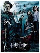 Harry Potter Cast Signed