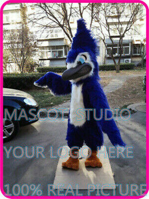 Blue Jay Mascot Costume Suit Cosplay Party Game Dress Outfit Halloween Fancy New](Blue Jay Halloween Costume)