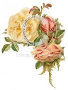 Vintage Rose Decals