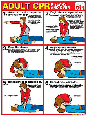 Adult CPR FIRST AID Instructional Wall Chart Poster (ARC-AHA Guidelines)