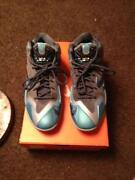 Youth Lebron James Shoes