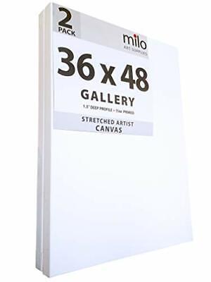 Pack of 2 Professional Artist Canvas Premium Back Stapled Large Format Design