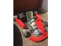 Go kart with briggs and stratton world formula engine