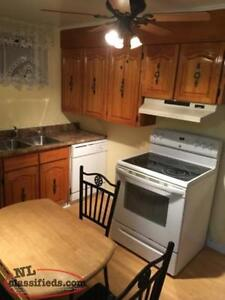 Mount Pearl Apartment