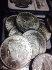 Silver Grade P 1 US Dollar Coins