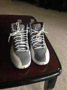 Jordan 12 Cool Grey