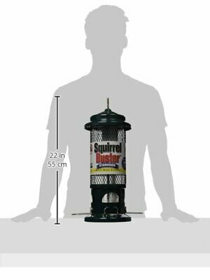 Brome Squirrel Buster Standard Wild Bird Feeder