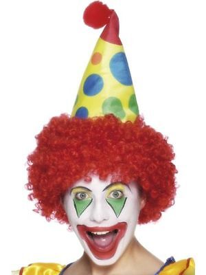 Men's Multi Coloured Clown Fancy Dress Hat & Hair Wig Circus Stag Theme Fun Do  ](Carnival Themed Costumes)