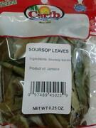 Guyabano Leaves