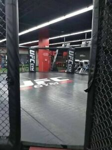 AUTHENTIC UFC GYM 24' MMA OCTAGON
