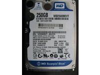 WD Blue WD2500BEVT - hard drive - 250 GB - SATA-300