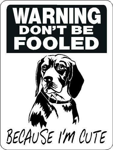 "Beagle 12""x18"" Aluminum Sign"