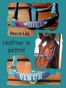 Halfter Pony
