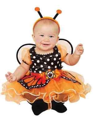 Infant girls 12-18 months MONARCH BUTTERFLY w/ Wings Halloween costume