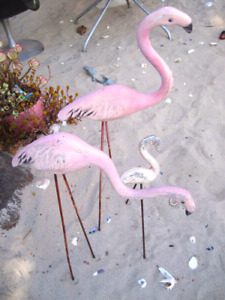 WANTED - Flamingos - old or new