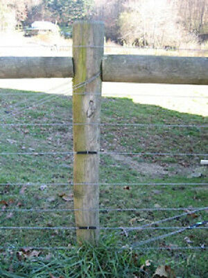 Gripple End Post Anchor System Saves Time 10 Pack For Trellis Or Fence