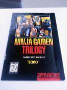 Ninja Gaiden NES