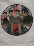 Beatles Picture Disc