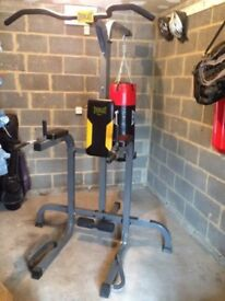 Everlast Pull & Dip Power Tower & Punch Bag Station (With Bag)