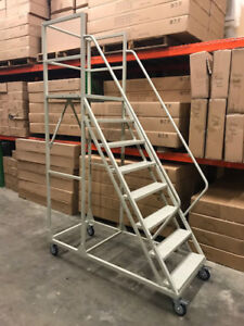 Warehouse Rolling Ladders