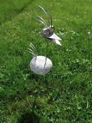 Granitvogel