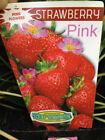 Strawberry Plant Fruit Plants