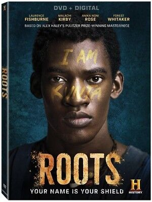 Roots  New Dvd  3 Pack