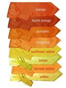 Orange Cravat
