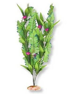 """Flowering Sword Cluster ColorBurst Aquarium Plant 13"""""""