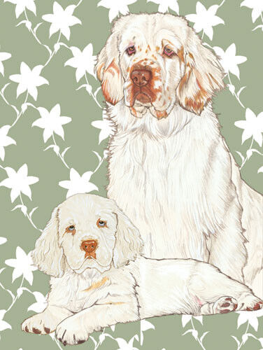 Clumber Spaniel Blank Note Cards Boxed