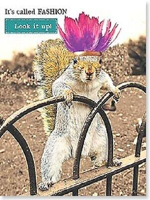 SQUIRREL ITS CALLED FASHION LOOK IT UP  HAPPY BIRTHDAY CARD NEW