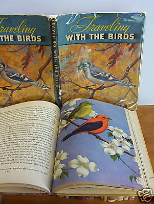 TRAVELING WITH THE BIRDS, Bird Migration by Boulton