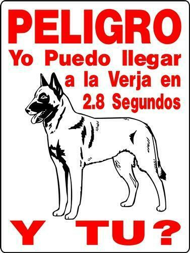 Peligro Belgian malinois aluminum dog sign  9 x 12